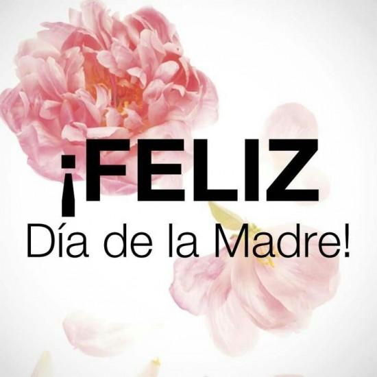 feliz día de la madre¡¡¡¡ Feliz-d%C3%ADa-de-la-madre29