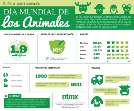 información Día del Animal (1)