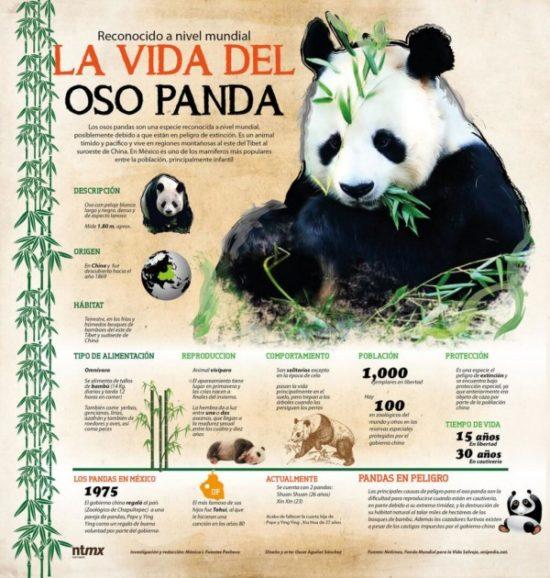 información Día del Animal (5)