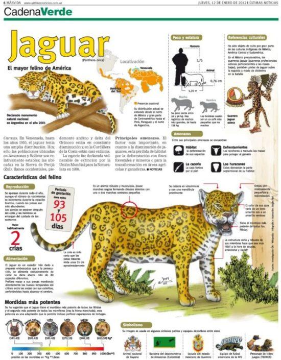 información Día del Animal (6)