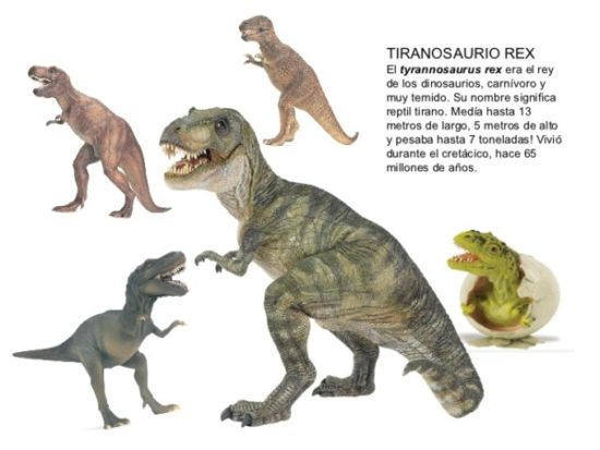 Dinosaurios información (20)