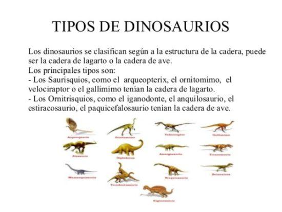Dinosaurios información (9)