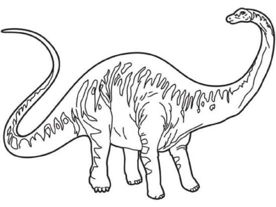 Dinosaurios para colorear dibujos (10)