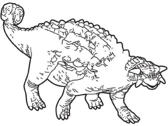 Dinosaurios para colorear dibujos (11)