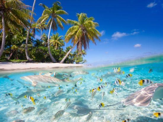 Playa bonitas  (1)