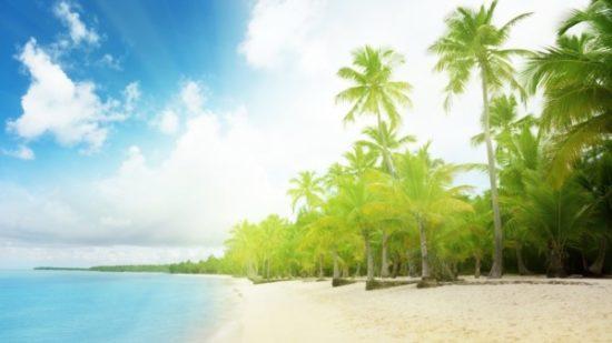 Playa sol y palmeras  (1)