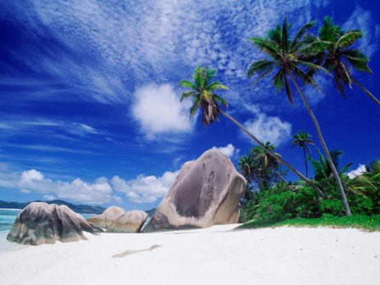 Playas paradisiacas  (14)