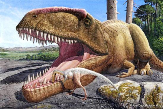 especies de Dinosaurios (11)
