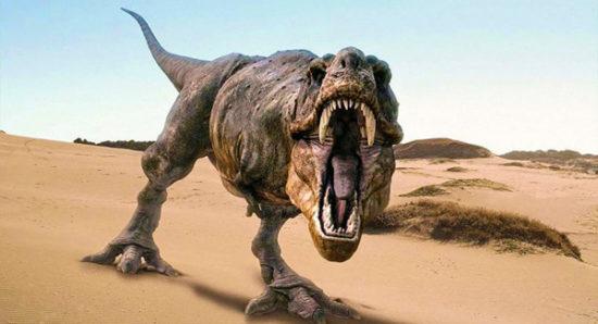 especies de Dinosaurios (14)