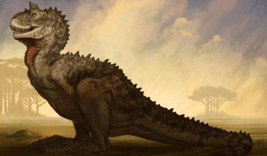 especies de Dinosaurios (15)
