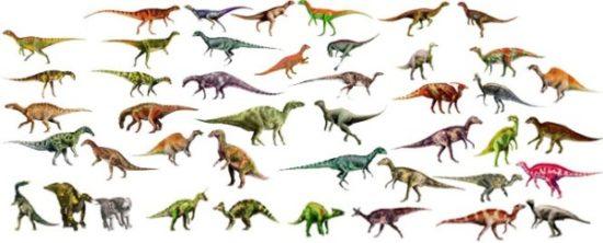 especies de Dinosaurios (2)