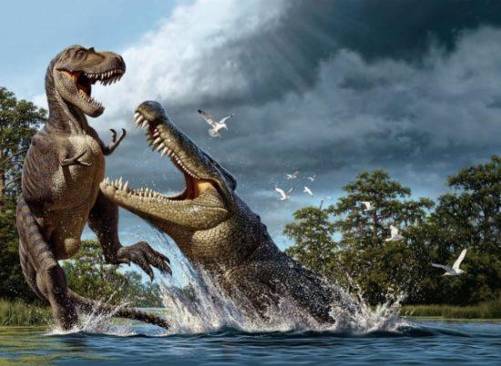especies de Dinosaurios (25)