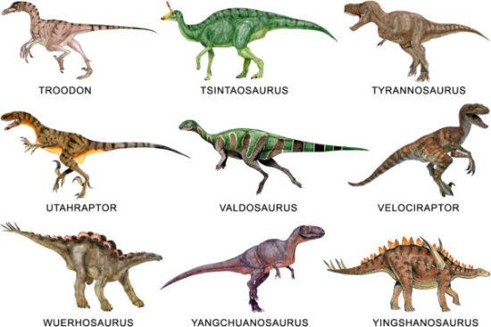 especies de Dinosaurios (27)
