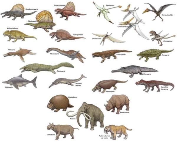 Informacion Imagenes De Dinosaurios Y Dibujos Para Colorear E Imprimir Informacion Imagenes