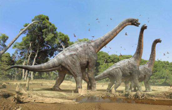 especies de Dinosaurios (5)