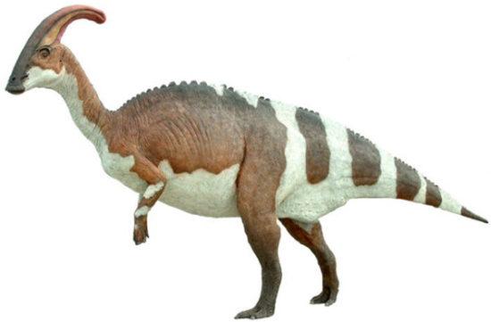 especies de Dinosaurios (6)