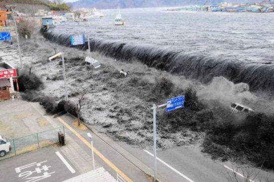 terremotos y maremotos (9)