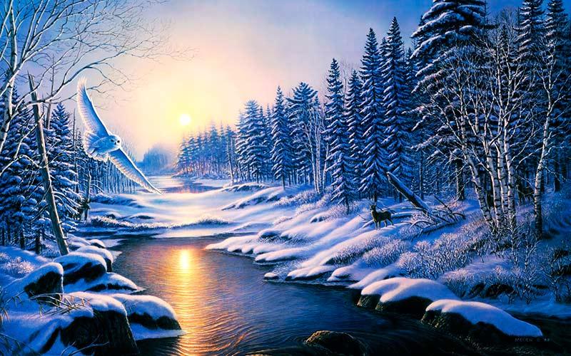 Hermosos paisajes de invierno para usar como Portada de