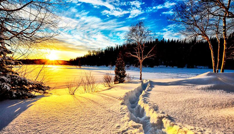 Hermosos paisajes de invierno para usar como portada de for Imagenes de patios de invierno