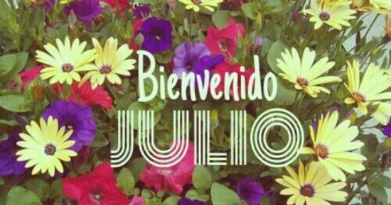 bienvenido Julio - frases (1)