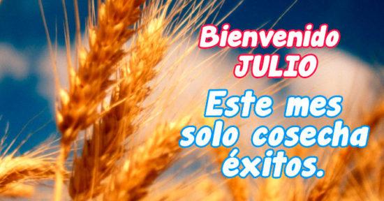 frase para Julio imagen