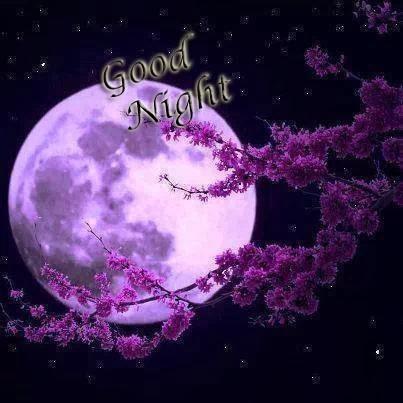 buenas-noches-in-english-7