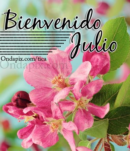 hola feliz julio (8)