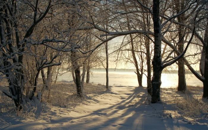 invierno-nuevo