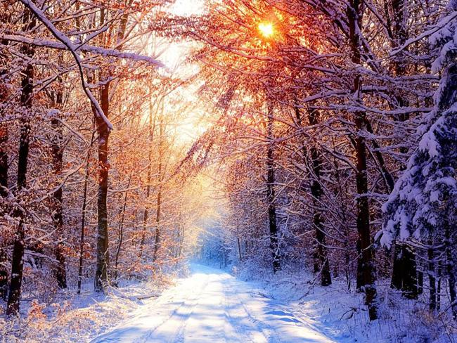 winter-invierno8