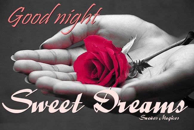 noche dulce