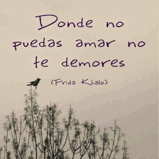 Frases y poemas de Frida Kahlo  (13)