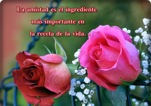 Frases De Amor Y Amistad: Bonitas Imágenes De Amor Y Amistad Con Frases, Mensajes Y