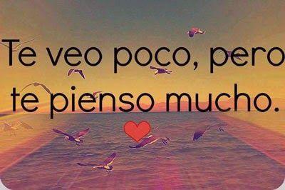 amor 10