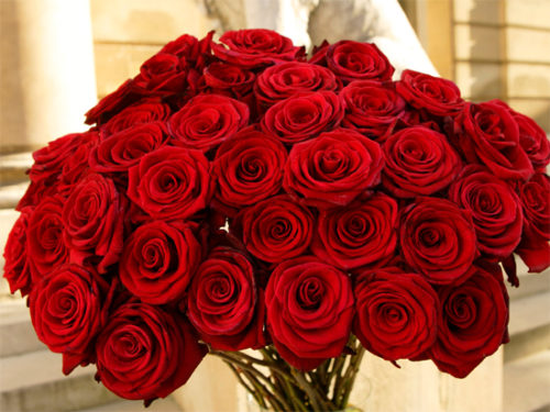 ramos-de-rosas-hermosas