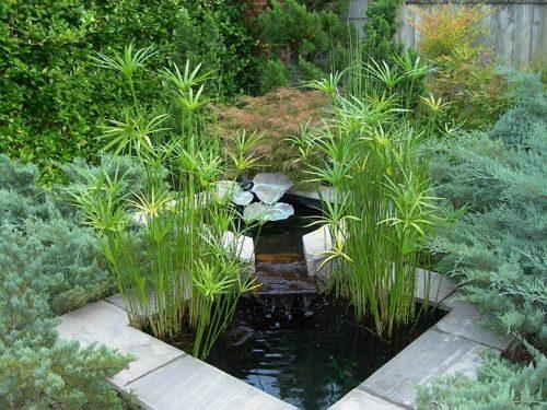 jardin-zen2