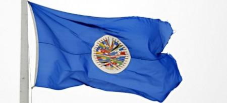 OEA-bandera