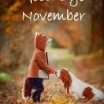 Good Bye November en imágenes – Adios Noviembre con frases de despedida