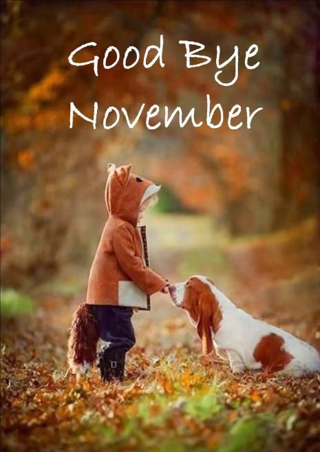 chau-noviembre.png4