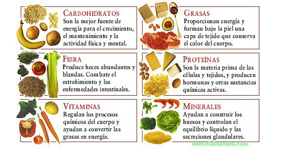 vegetales.jpg2_