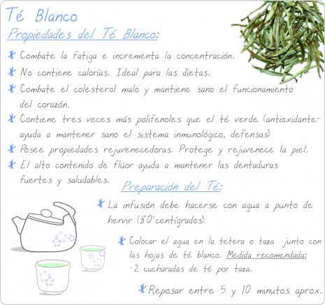infografias del te verde.jpg3