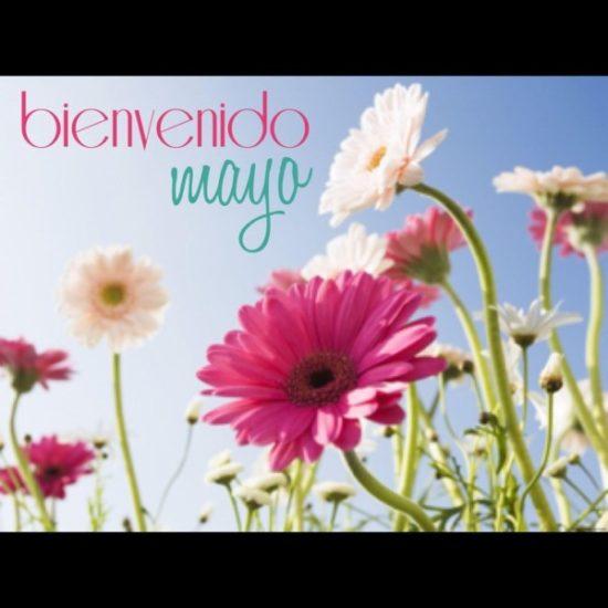 Bienvenido Mayo (1)