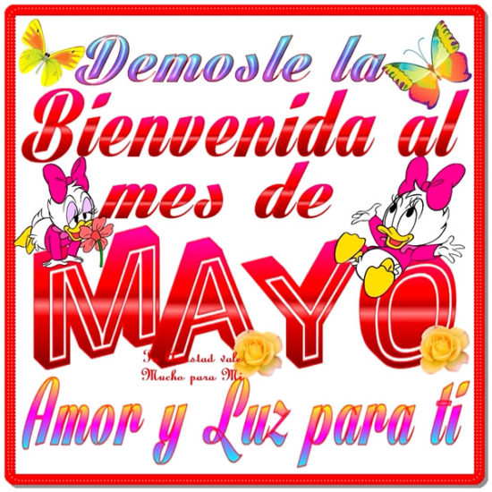 Bienvenido Mayo (2)