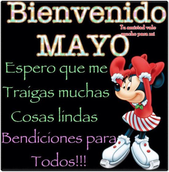 Bienvenido Mayo (5)