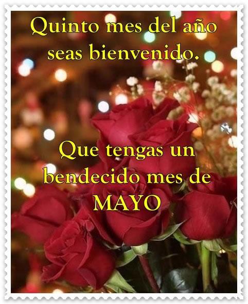 Bienvenido Mayo (7)