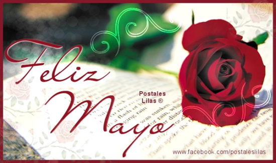 Feliz Mayo (1)