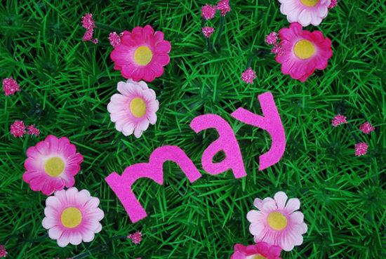 Feliz Mayo (3)