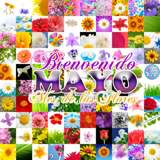 Feliz mes de Mayo (2)