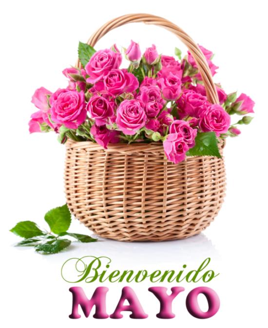 Feliz mes de Mayo (4)