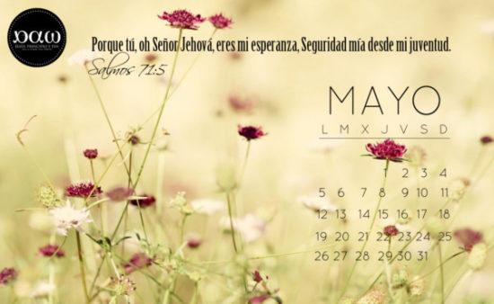 Feliz mes de Mayo (5)