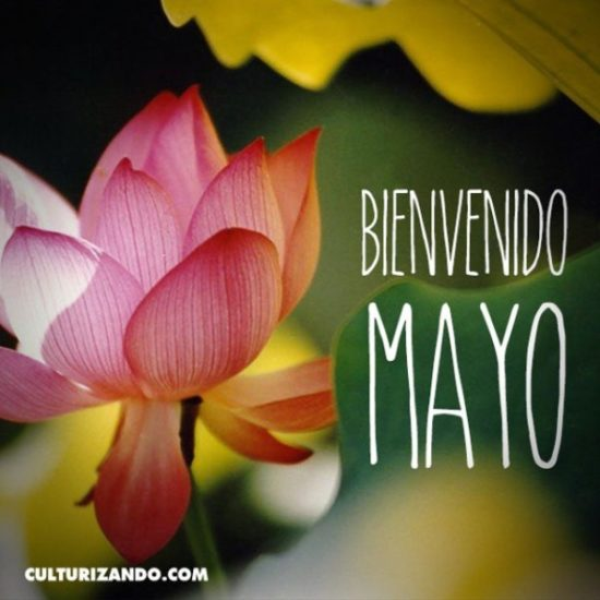 Frases mes de Mayo (1)